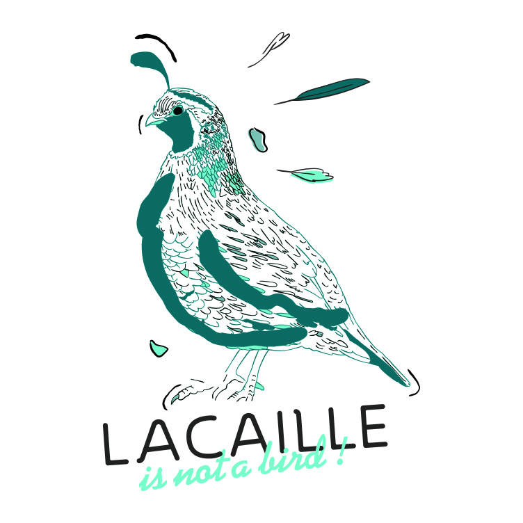 LACAILLE